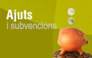 Subvencions i Ajuts